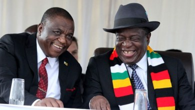 Photo of 'G40 sits at the top table with you' – Zanu-PF official shocks Mnangagwa
