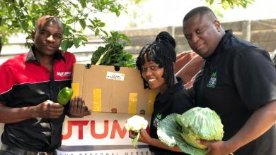 Photo of Zimbabwean businesses turn to social media to boost sales