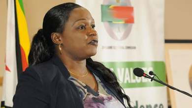 Photo of Tribunal for Justice Erica Ndewere to be named today