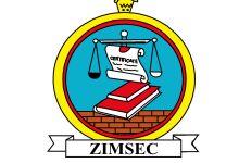 Photo of How to view ZIMSEC Grade 7 results online
