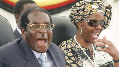 Photo of Greedy accumulation: Mugabe family owns 24 farms
