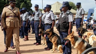 Photo of ZRP ordered to pay $150,000 to 15-year-old boy bitten by police dogs