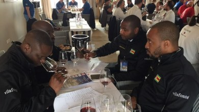 Photo of Zimbabwean refugees in SA enjoy top quality wine