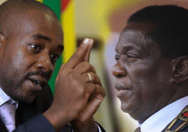 Stop violence: Chamisa to ED