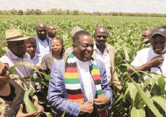 Mnangagwa says Zimbabwe cannot have two platforms to discuss one issue