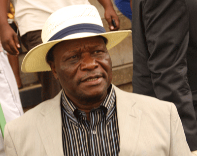 Former minister Goche arrested for stock theft