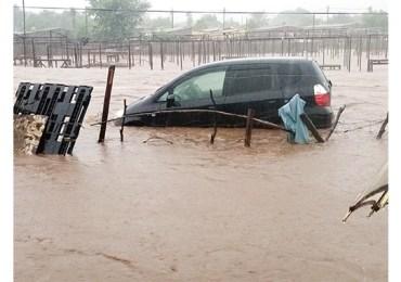 Flash floods leave cars submerged in Beitbridge