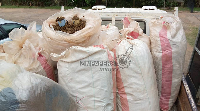 Marijuana valued at $48 million recovered from Vic Falls resident