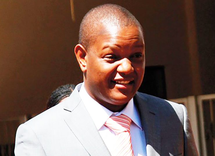 Grace Mugabe's son Russell in court accused of stealing mining equipment