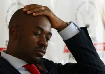 Chamisa, Biti to be barred from 2023 polls, says Sikhala