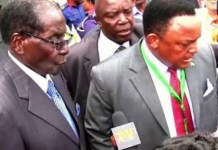 MUGABE'S CIO BOSS GRABBED AND HEAVILY BATTERED BY ARMY