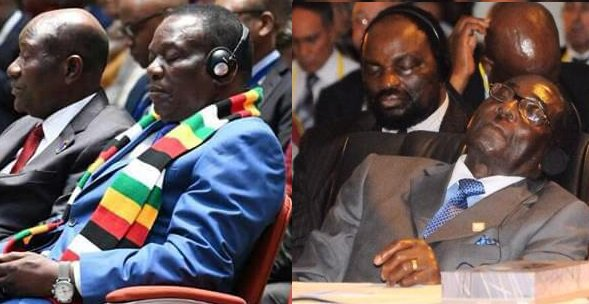 ZIMBOS REACT TO PHOTO OF ED 'resting his eyes""
