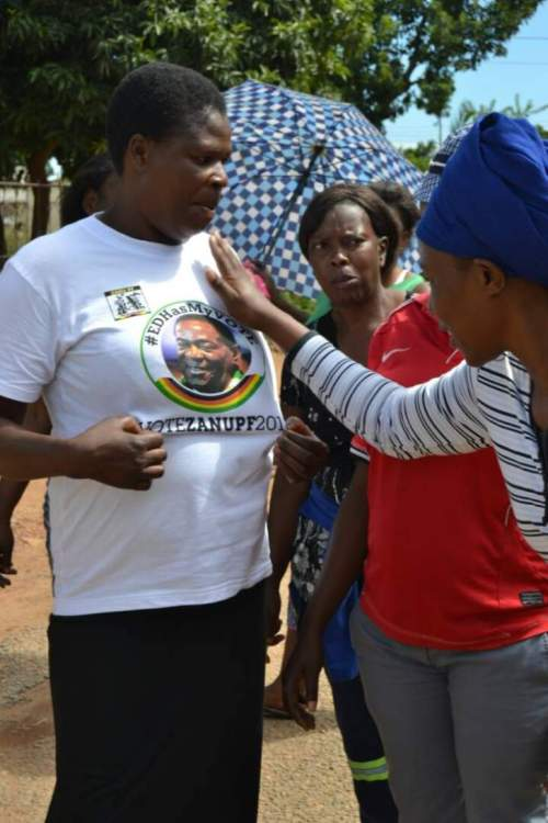 'MNANGAGWA #EDHASMYVOTE' GOES DOOR TO DOOR