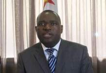 WE WANT ZIM TO BE A KEY PLAYER : MOYO
