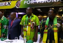 CHAMISA IS A JUVENILE POLITICIAN : CHIWENGA