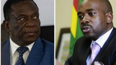 Photo of LATEST: PRESIDENT MNANGAGWA RULES OUT GNU WITH NELSON CHAMISA; SPEAKS ON ELECTORAL REFORMS