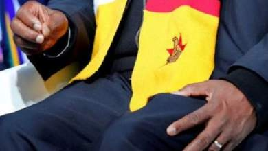 Photo of MNANAGWA'S SCARF FEATURE IN MDC ELECTION RESULTS COURT CHALLENGE