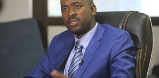 Chamisa Cries Foul On Violence Against MDC Supporters