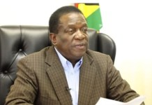 There Was No Media Bias Ahead Of Polls : Mnangagwa