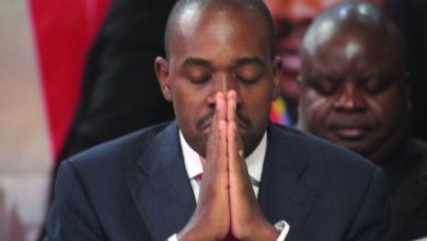 Photo of MDC ALLIANCE LEADER NELSON CHAMISA CALLS FOR URGENT REMOVAL OF BOND NOTES