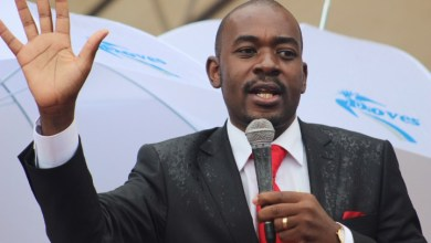 Photo of 'YOU CAN RIG ELECTIONS NOT ECONOMY', NELSON CHAMISA'S MDC WARNS MNANGAGWA ON WORSENING ECONOMIC PROBLEMS