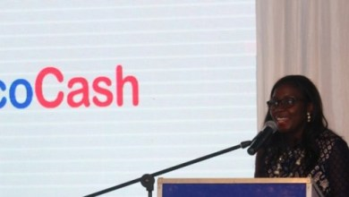 Photo of Subdued EcoCash Services Affect Retail Sales