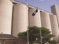 600 000 Tonnes Of Grain Delivered To GMB