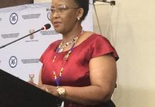 SADC Countries To Scrap Out Visa Requirements Between Each Other