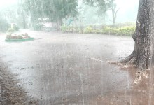 Photo of Storm Hits Guruve, 100 families left homeless
