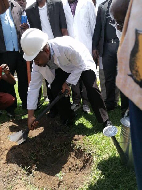 Gunshots In Marondera As Chamisa plant trees