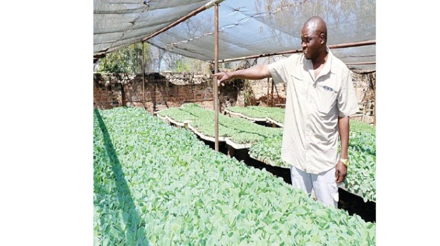 MINISTER: THE HORTICULTURAL FARMER