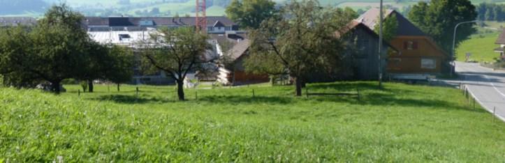Gewerbehaus in Riggisberg