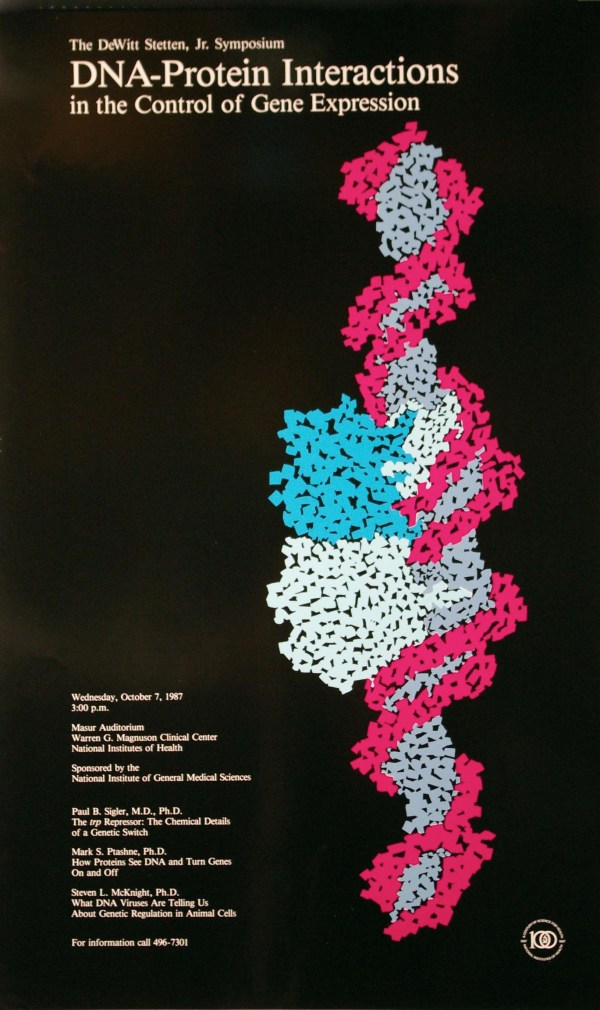 Dna Replication Poster Project American Dreamer Trailer