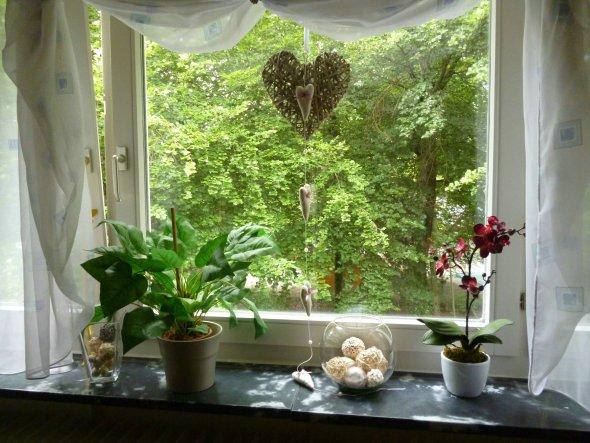 Wohnzimmer Fenster Neu