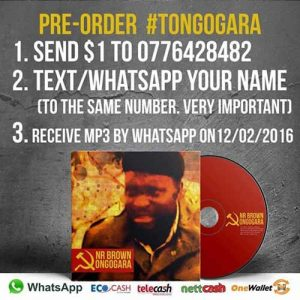 Jnr-Brown Tongogara earnings