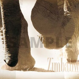 Visions of Zimbabwe - Elephants