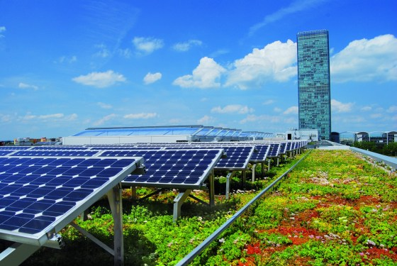 The use of green roofs and solar energy can help mitigate the urban heat island effect and contribute to a city's sustainability.
