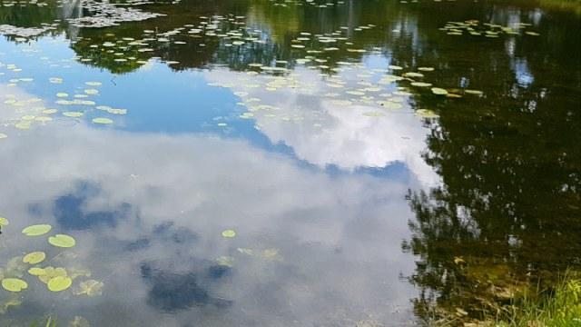 In de spiegel van het water kijken als naar de spiegel van je ziel.