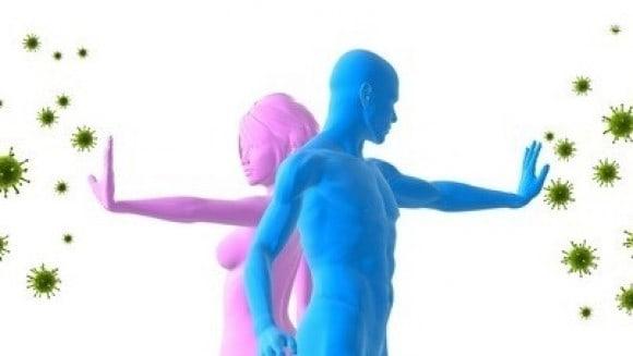 Imunitetui-stiprinti Stipriname imunitetą, priemonės peršalus ir nuo sąnarių skausmo!