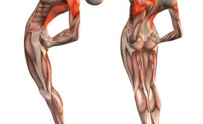 Šie pratimai pagerina kraujo pritekėjimą į smegenis, ištiesina stuburą, praplečia kraujagysles