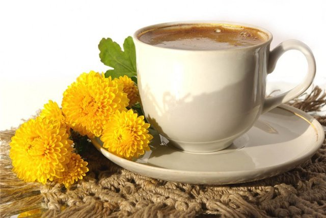 Kiaulpieniu-kava Lietuviška Kiaulpienių Šaknų Kava
