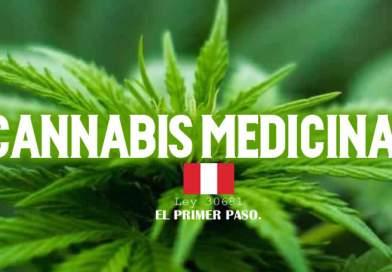 Reglamento de la ley que regula el uso medicinal y terapéutico del cannabis