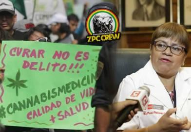 PERÚ: Ministros firmaron reglamentación para el uso del Cannabis Medicinal