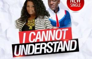 Lily adeyemi-i cannot understand-sammie okposo.jpg