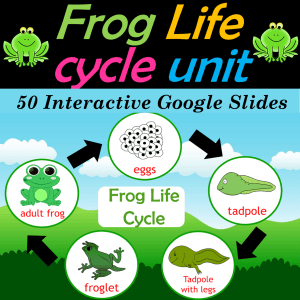 Frog Life Cycle Google Slides