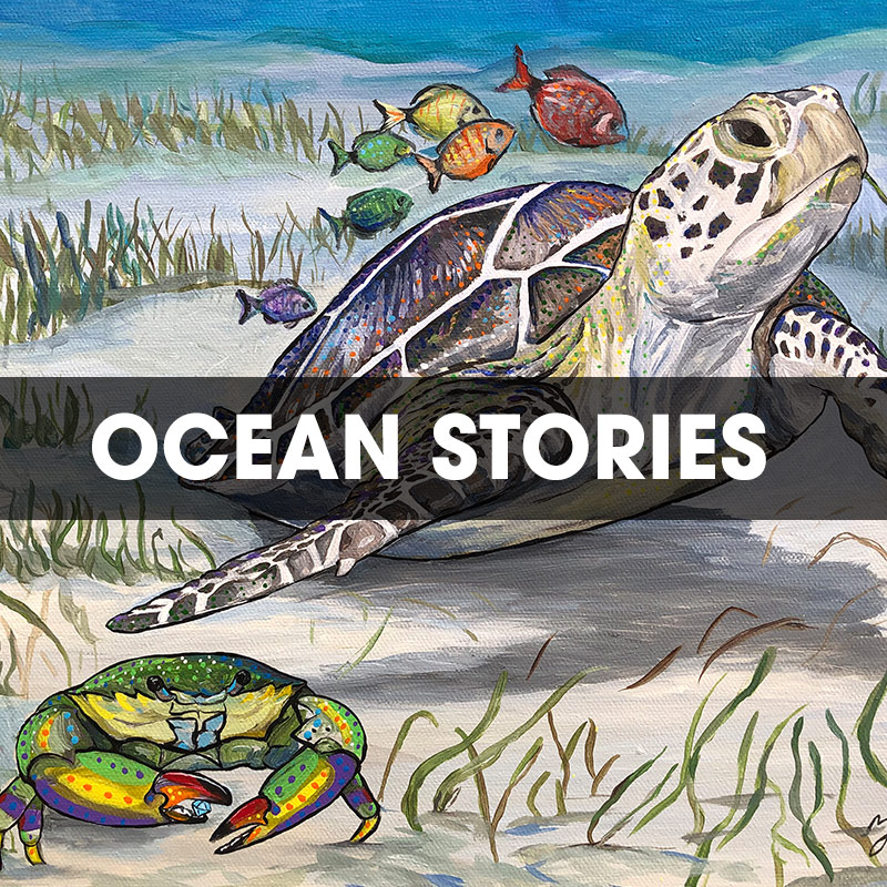 Ocean Stories Series
