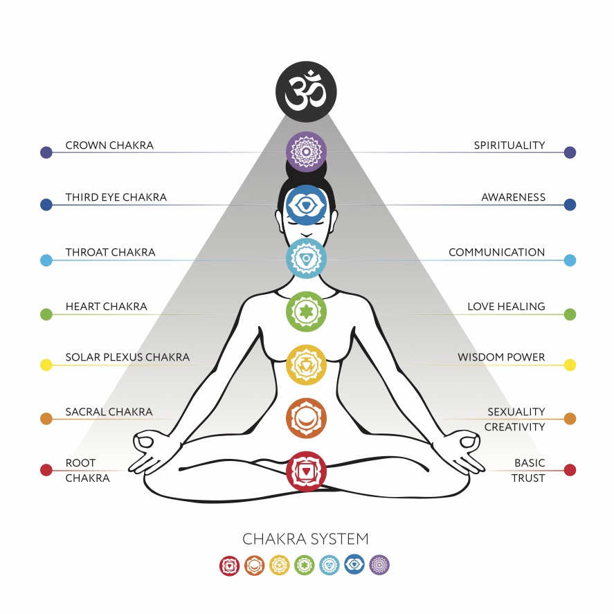 medium resolution of chakras a brief guide for beginners z livingdiagram of 7 chakras 19