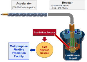 A schematic of the MYRRHA (Multi-purpose hYbrid Research Reactor for High-tech Applications) concept allows for industrial scale treatment of nuclear waste.