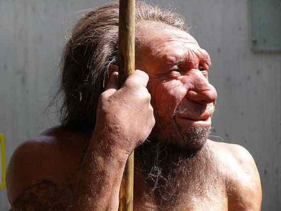 Reconstruction of a Neanderthal. Photo credit: erix!