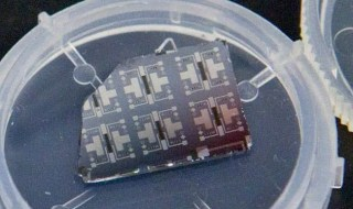 Several prototypes of the synaptic transistor are visible on this silicon chip. (Photo by Eliza Grinnell, SEAS Communications.)
